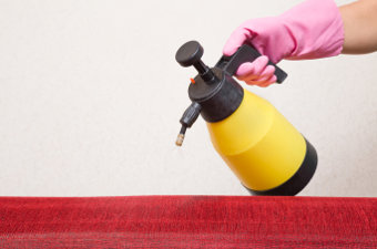Furniture Cleaners and Protectors