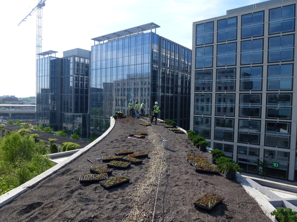 Bureau of Alcohol, Tobacco, Firearms and Explosives Green Roof Soil Installation