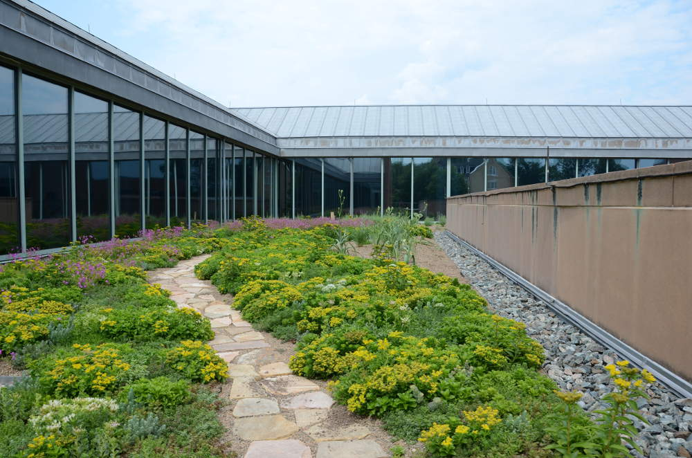 National Foreign Affairs Training Center Green Roof